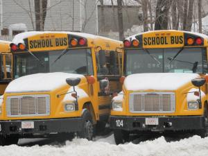 snowy-busses